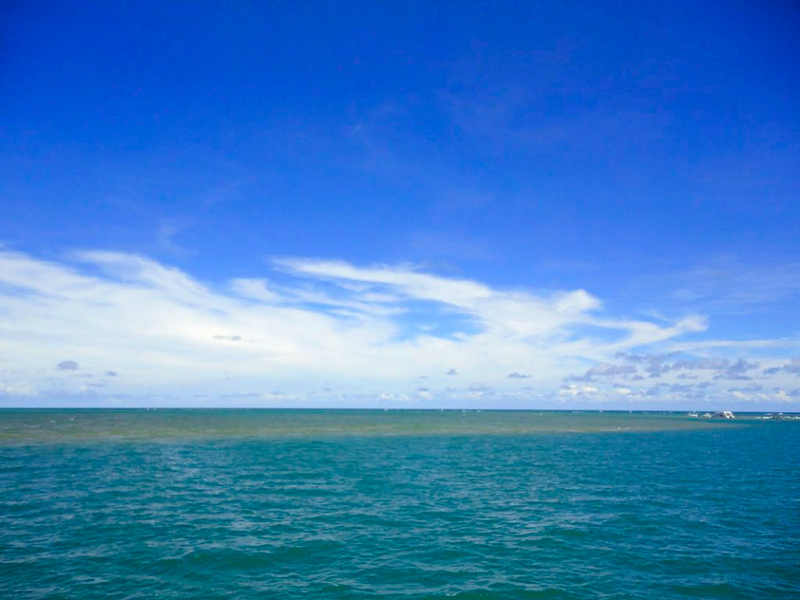 Praia de Carneiros no Pernambuco