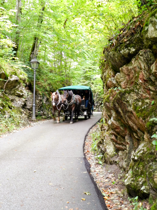 Charrete em Füssen na Alemanha