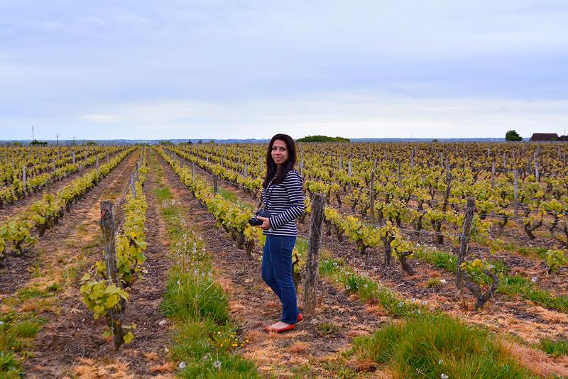 vinícola da Domaine Hüet Viagem para PAYS DE LA LOIRE e CENTRE NA FRANÇA