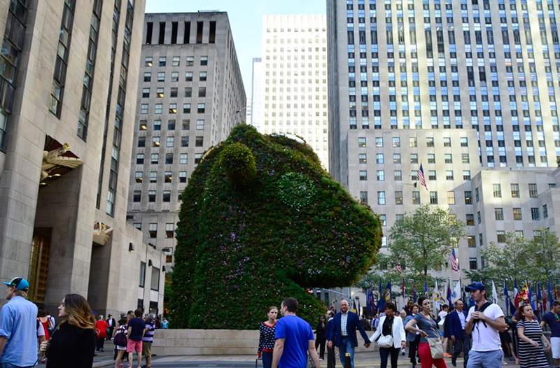 topiaria em New York