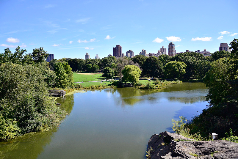 Vista do Turtle Pond a partir do Belvedere Castle no Central Park de New York