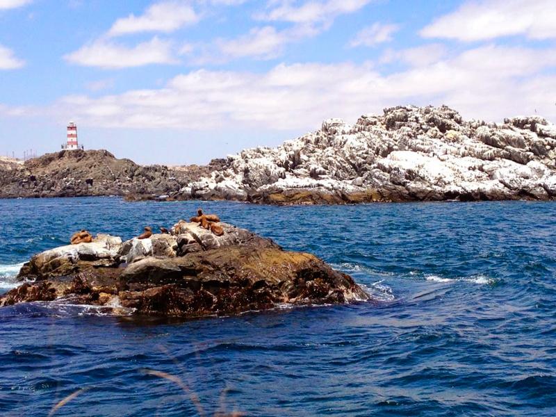 Bahia Inglesa em Caldera no Atacama Chileno no Chile