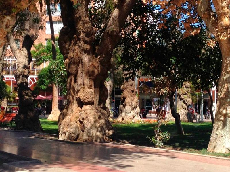 Praça Prat em Copiapó no Chile