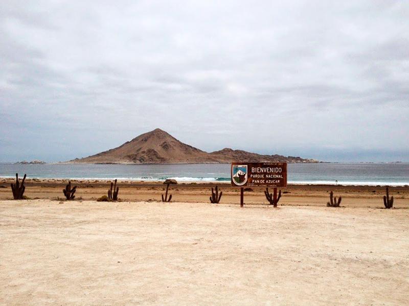 Parque Nacional Pan de Azucar no Chile