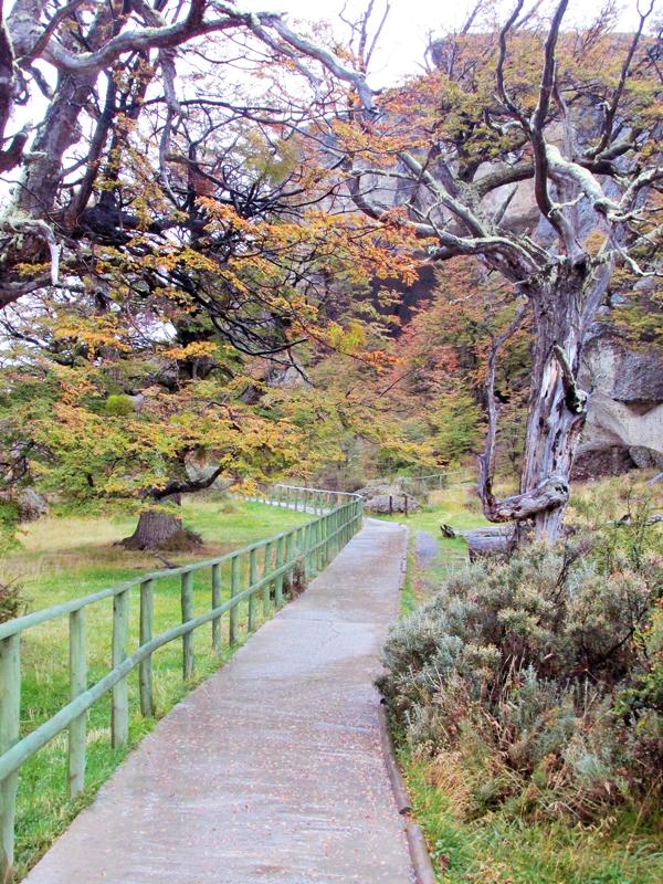 Dicas de Viagem a PUNTA ARENAS e PUERTO NATALES, Torres del Paine, Cueva del Milodón