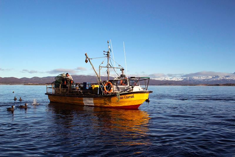 Pescador em Ushuaia na Argentina
