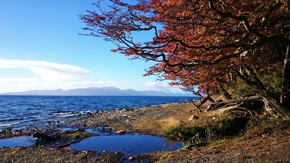 Ushuaia, Argentina, Tierra del Fuego, Fim do Mundo, Patagonia, Patagonia Argentina, América do Sul, South America