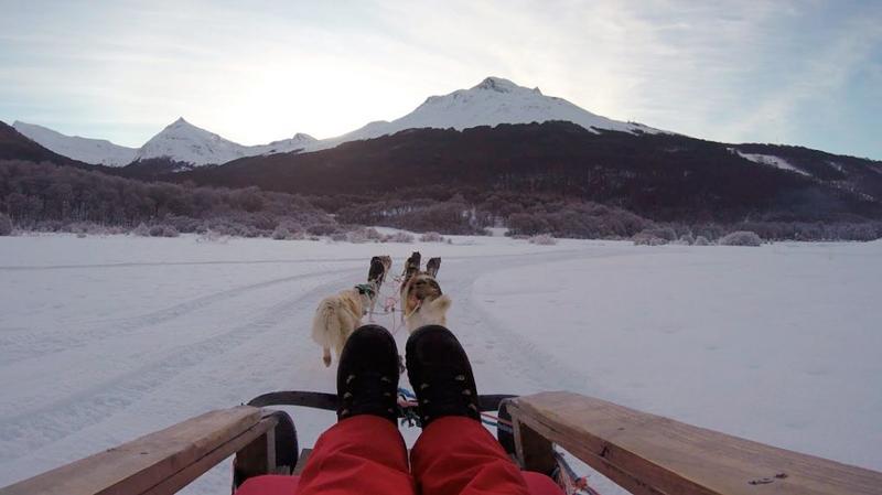 Passeio com Huskies em Ushuaia na Argentina