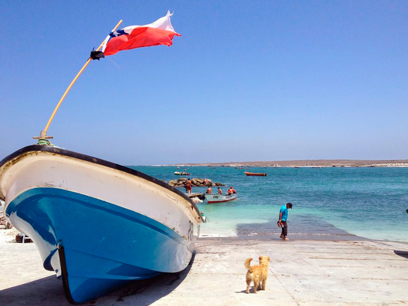 Punta Choros no Chile