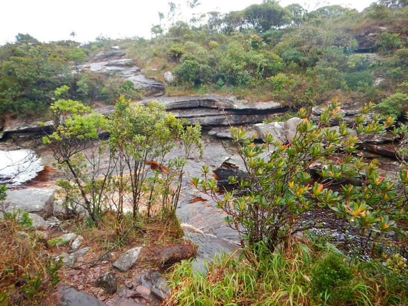 Trilha para Cachoeira da Fumaça no Vale do Capão na Chapada Diamantina na Bahia