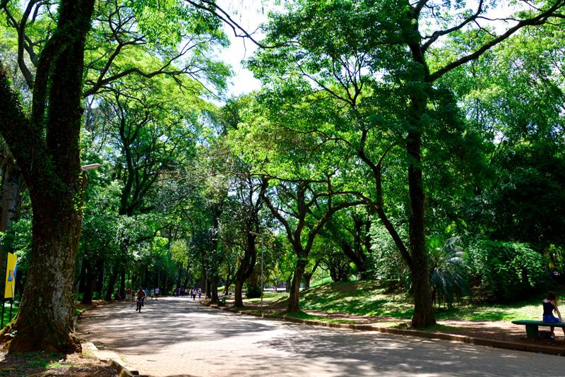 São Paulo, Brasil, América Latina, Parque do Ibirapuera