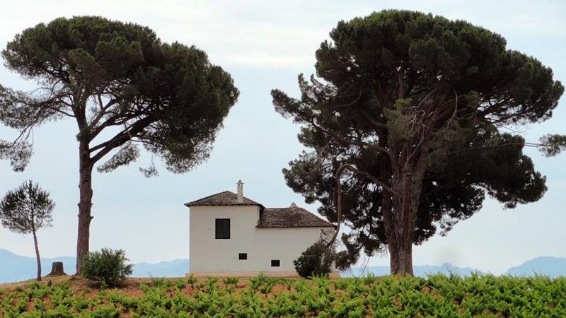 Em Cacabelos na Espanha