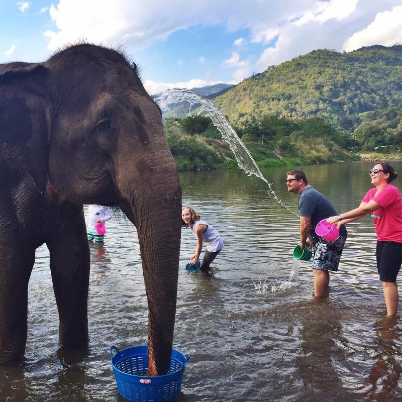 Elephant Nature Park na Thailand, onde a família cuidou dos elefantes como voluntários (Dezembro/2015)