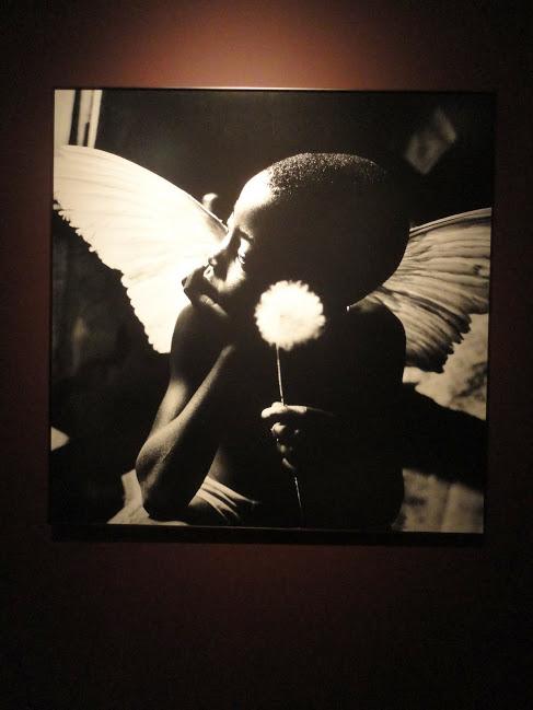 Exposição da fotógrafa Maureen