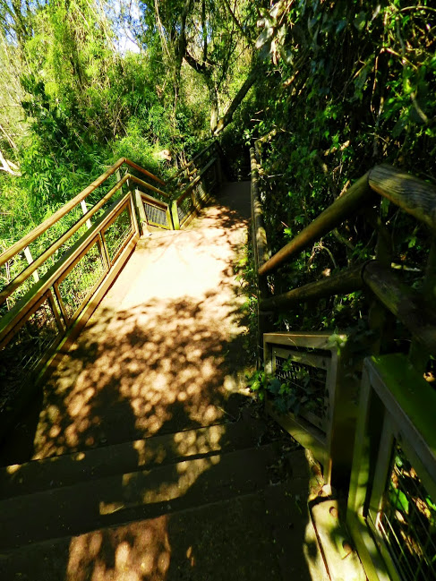 puerto-iguazu-19