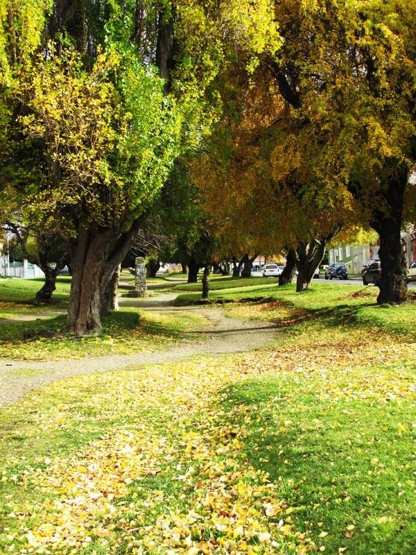 Outono, Punta Arenas