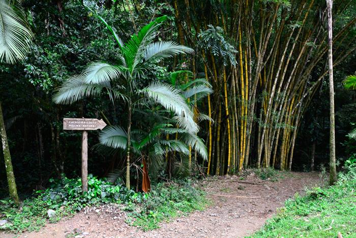 PETAR, Parque Estadual Turístico do Alto Ribeira, São Paulo, Brasil, Núcleo Santana, Caverna de Santana, Iporanga