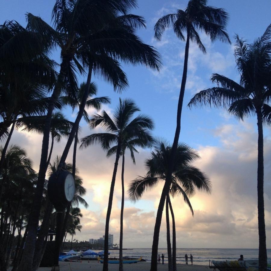 Waikiki beach, Casamento e lua de mel no Hawaii, Estados Unidos