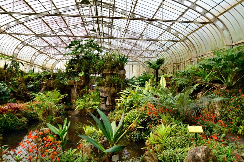 Um dos orquidários do jardim botânico de são paulo