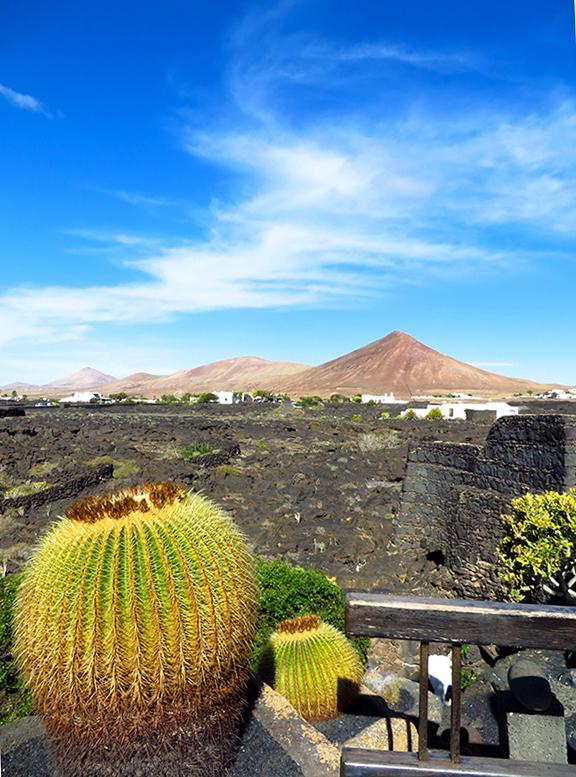 Cactps e vulcões de Lanzarote, Ihas Canarias, Espanha
