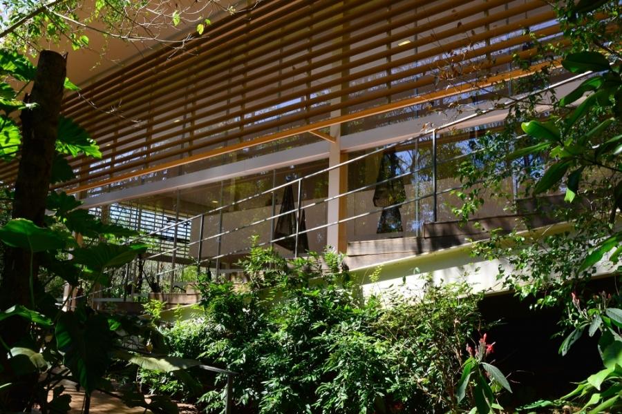 Instituto Inhotim - Rota Laranja, Inhotim, Minas Gerais, Brasil, Arte Contemporânea, Parque, Galeria Psicoativa Tunga