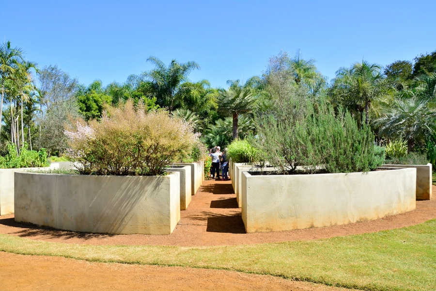 Inhotim, Minas Gerais, Brasil, Arte Contemporânea, Parque, Jardim de Todos os Sentidos