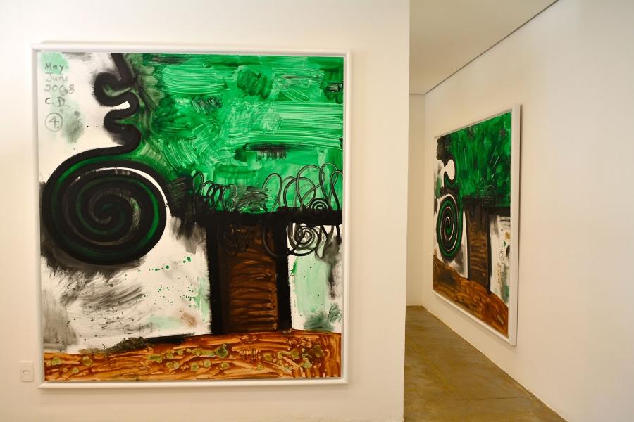 Inhotim, Minas Gerais, Brasil, Arte Contemporânea, Parque, Galeria Carroll Dunham