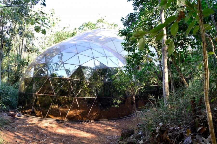 Inhotim, Minas Gerais, Brasil, Arte Contemporânea, Parque, Galeria Matthew Barney