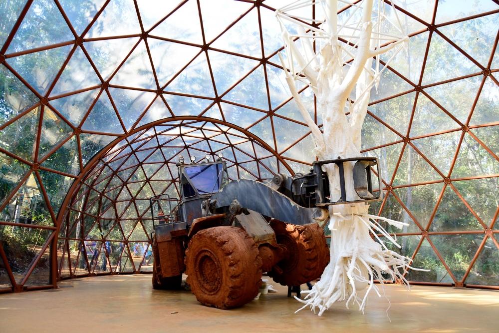 Instituto Inhotim - Rota Rosa, Inhotim, Minas Gerais, Brasil, Arte Contemporânea, Parque, Matthew Barney
