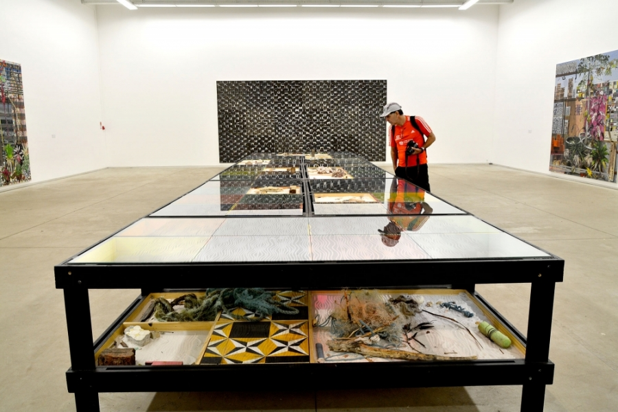 Inhotim, Minas Gerais, Brasil, Arte Contemporânea, Parque, Galeria Praça, Luiz Zerbini