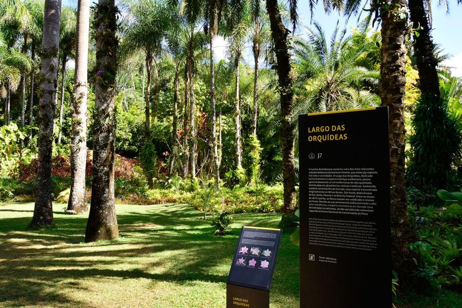 Inhotim, Minas Gerais, Brasil, Arte Contemporânea, Parque, Largo das Orquídeas