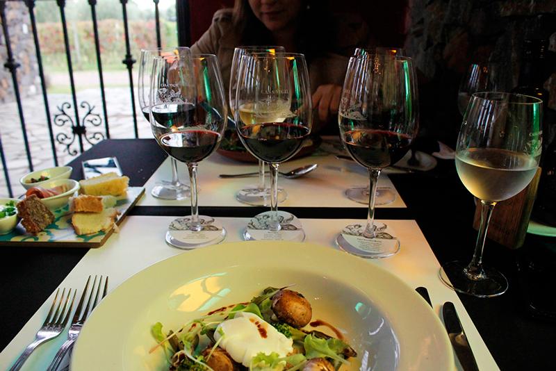 Almoço na Bodega El Enemigo em Mendoza na Argentina