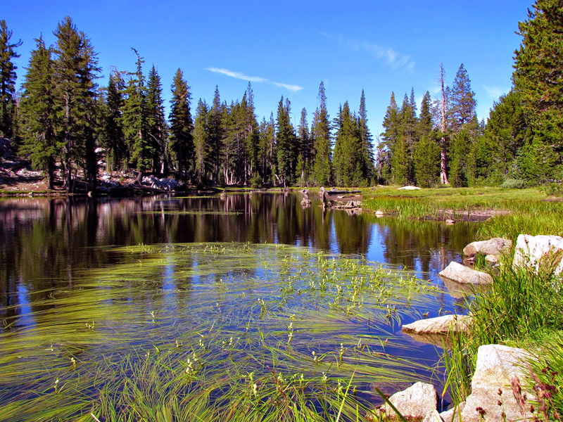 Yosemite National Parque, California, Estados Unidos