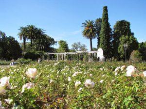 BUENOS AIRES: recoleta, palermo e villa crespo, Argentina - Buenos Aires, Argentina