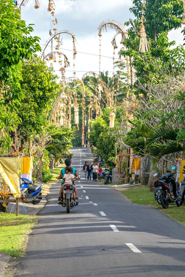 Diário de Bordo: Os arrozais de Bali, Indonésia, Tegalalang