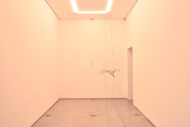 Mendes Wood DM, Galeria Mendes Wood, arte contemporânea, São Paulo, Brasil, Brazil, contemporary art