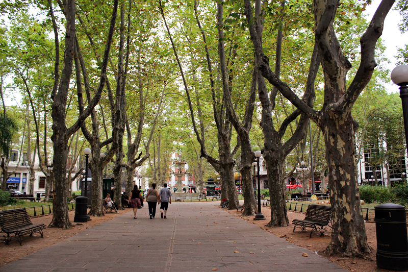 Plaza Matriz, Plaza Constituicion de Montevideo