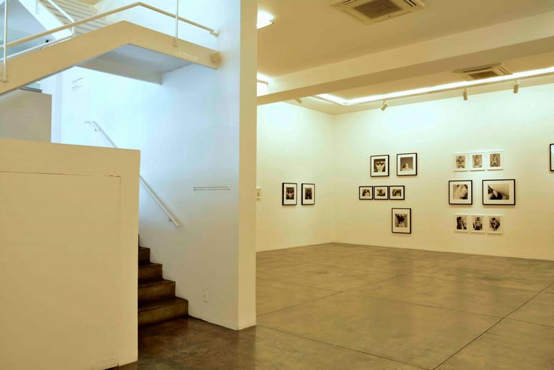Galeria Fortes D'Aloia & Gabriel de arte contemporânea na Vila Madalena em São Paulo