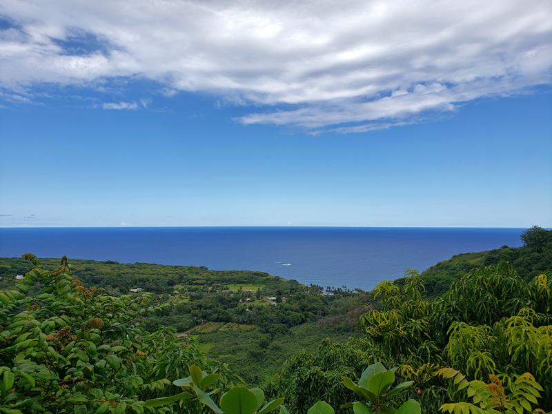 Vista no caminho para Hana no Hawaii