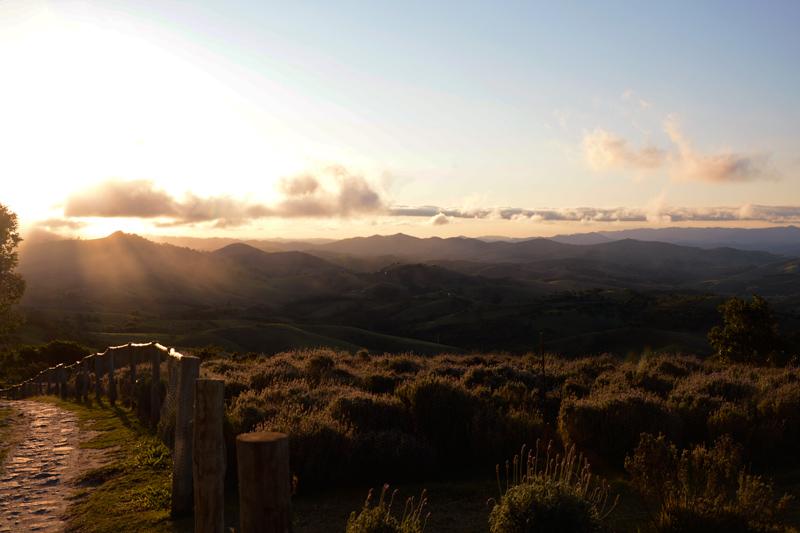 Lavandário de Cunha no fim de tarde