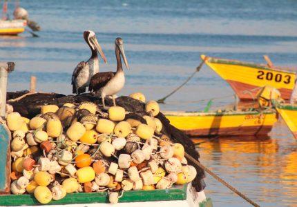 Puerto de Coquimbo no Chile