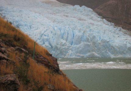 Glaciar Balmaceda, Campo de Hielo Sur