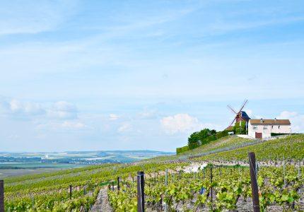 Champagne Ardenne, France, França